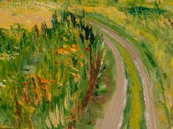 Field landscape detail
