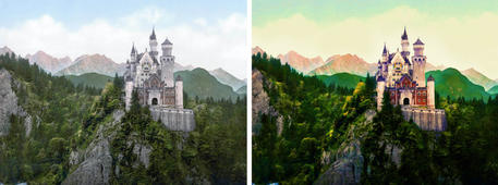 Castle in the middle of forest mountain