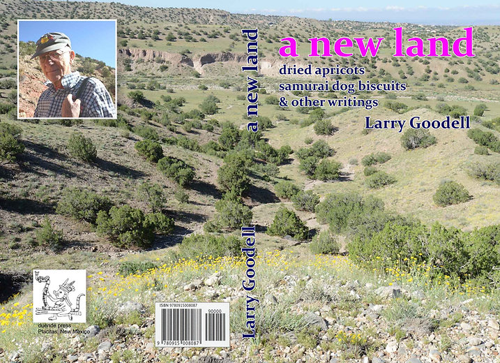 Goodell A New Land-cover with isbn.jpg