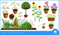 Prop Design - Plants