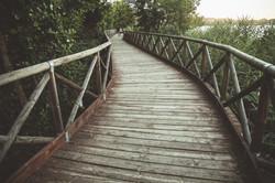 thérapie de couple, conflit conjugal