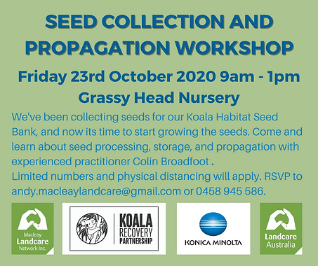 Seed Collection and Propagation Workshop