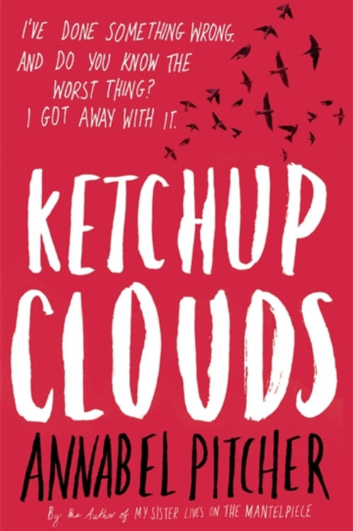 Annabel Pitcher - Ketchup Clouds (AGE 12+)