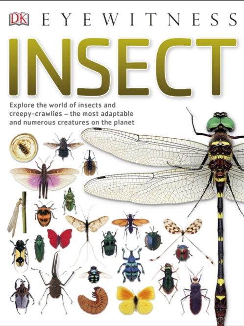 Eyewitness Insect (AGE 8+)