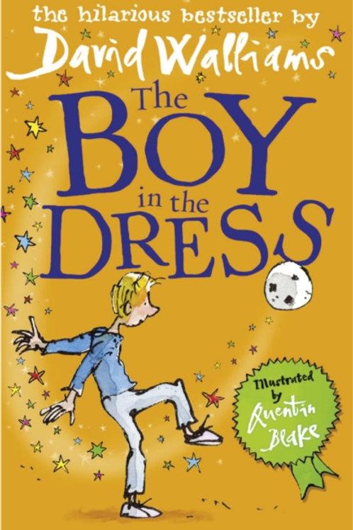 David Walliams - Boy In A Dress (AGE 8+)