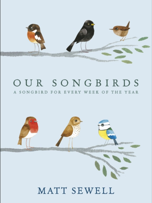 Matt Sewell - Our Songbirds: A Songbird For Every Week Of The Year (HARDBACK)