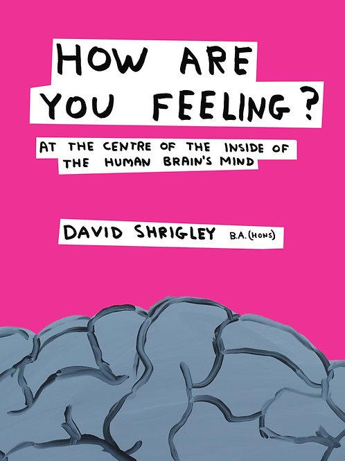 David Shrigley - How Are You Feeling? (HARDBACK)