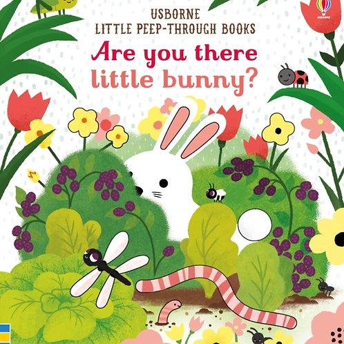 Sam Taplin - Are You There Little Bunny?  (AGE 0-2) (HARDBACK)