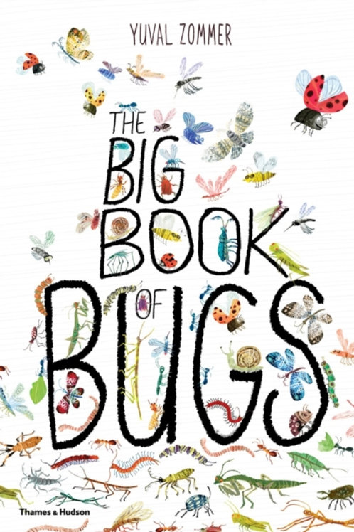 Yuval Zommer - Big Book Of Bugs (AGE 5+) (HARDBACK)