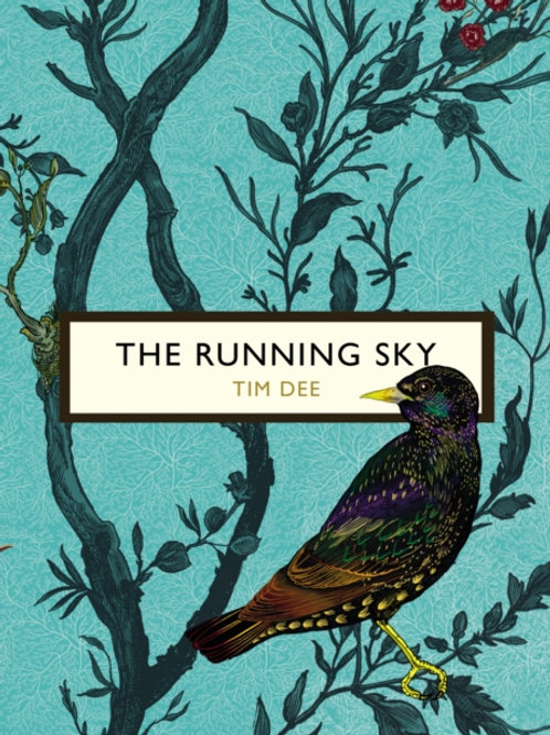 Tim Dee - The Running Sky