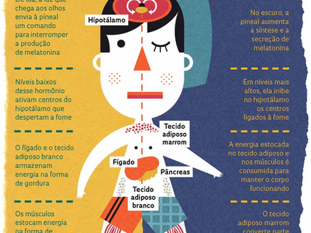 Melatonina - regulação do sono