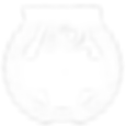 AADFF-2019-LAUREL-WHITE-TRANSPARENT-WINN