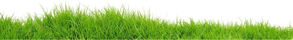 21-grass-png-image-green-grass-png-pictu