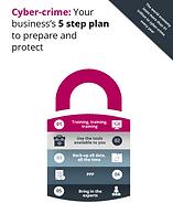 2021 Cyber Crime Plan Guide