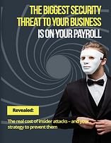 2021 Payroll Security Guide