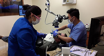 Root Canal Specialist in Chino