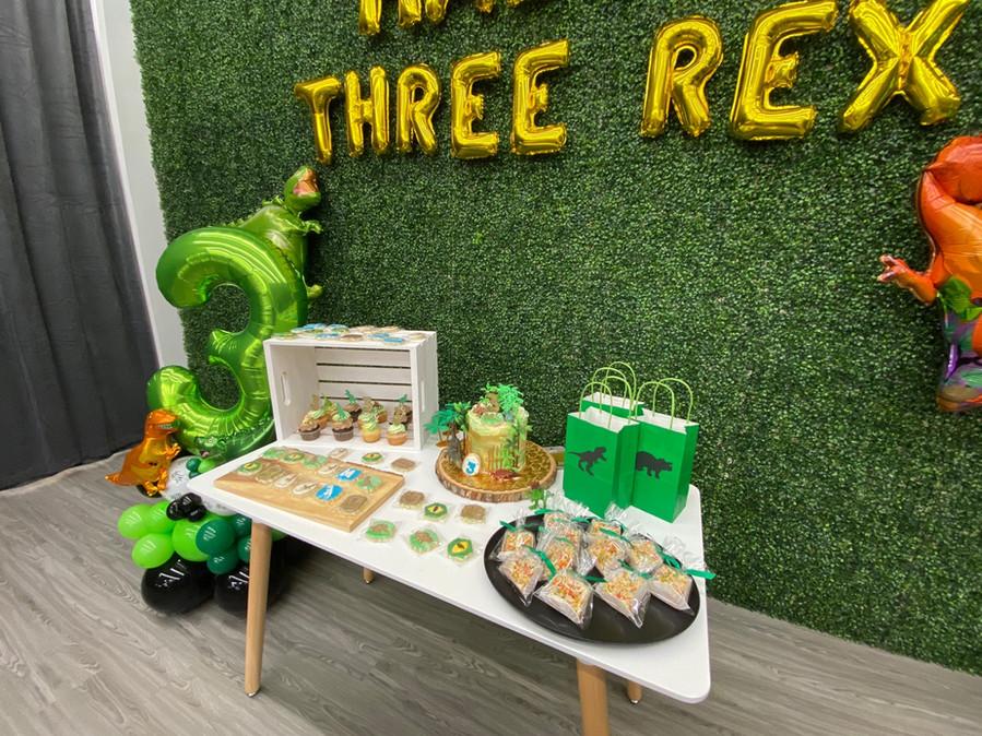 Dino Themed Birthday Party at Kids City Adventure!