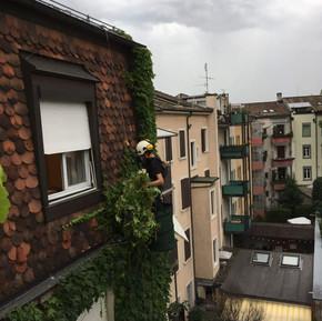 Höhenarbeiter Fassade