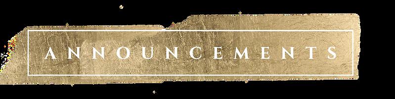 Announcements (1).png