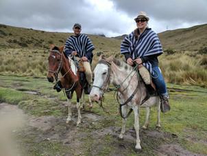 5 USD to ride horses