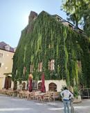Restaurant Pfistermuhle