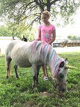 cookie unicorn.jpg