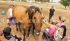 Socialite buckskin horse Pharaoh joins the group talk session on the third day of the workshop. Held said on the first day the participants and horse stayed on each end of the arena. (Lailani Upham photo)