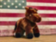 Patriot Plush.jpg