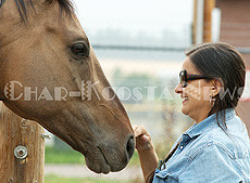 """Pharaoh, a young buckskin horse who was labeled """"Mr. Social"""" by the group reaches in to give Deborah Gould, Voc Rehab job developer, some loving attention. (Lailani Upham photo)"""