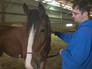 Horses Help Local Veterans Heal After War