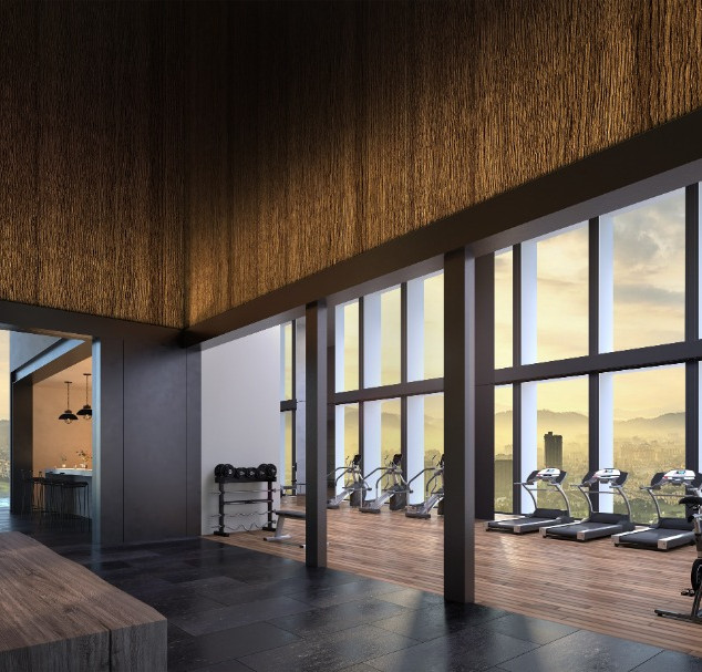 The Conlay Gym