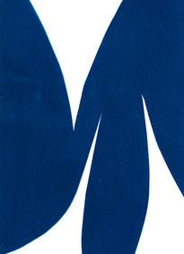 the urge to play I, cyanotype 15 x 21 cm