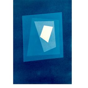 les feuilles mortes I , cyanotype 15 x 2