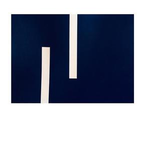 both , cyanotype , 15 x 21 cm