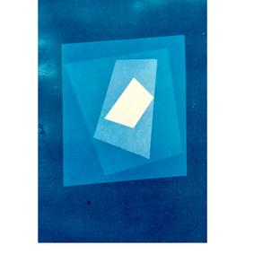 les feuilles mortes III, cyanotype 15 x