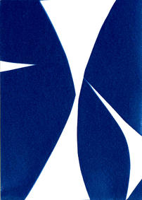the urge to play II, cyanotype 15 x 21 c