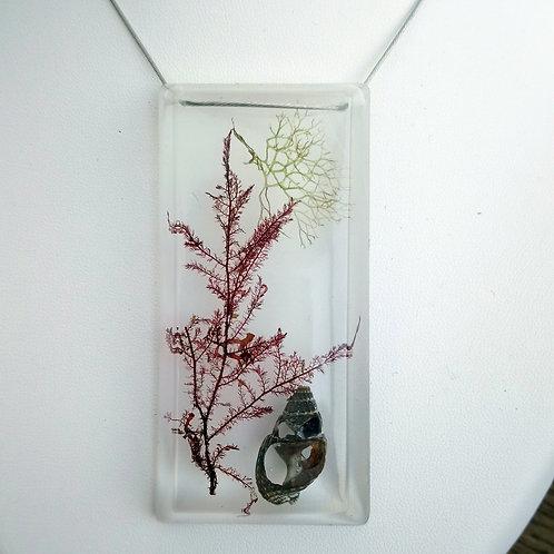 Pendentif algues, coquillage et résine
