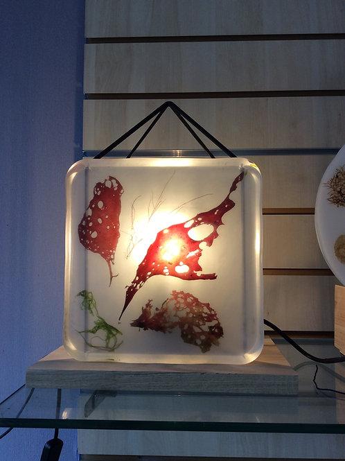 lampe dils et résine