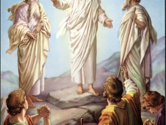 We Will Also Be Transfigured