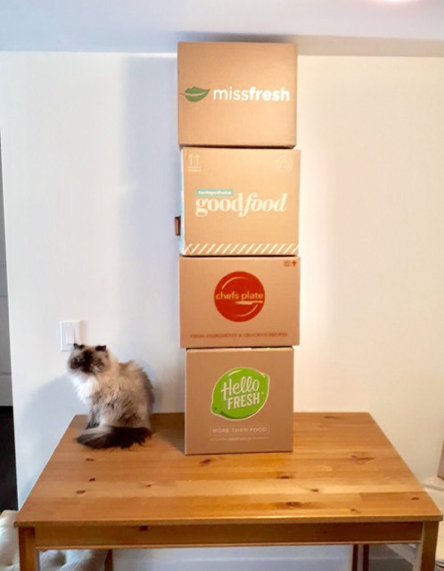 An image of four meal kit boxes stacked on top of each other with a cat sitting next to them.