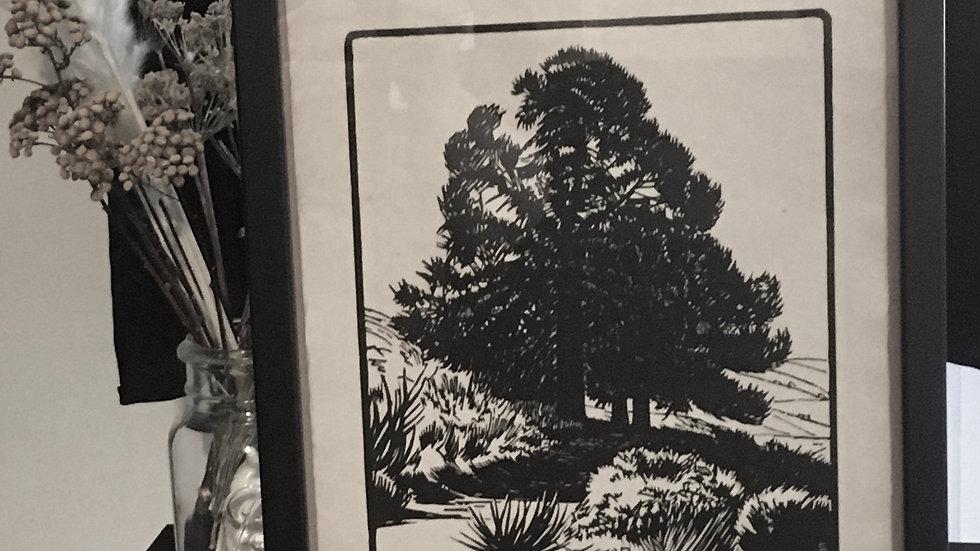 Illustration originale numérotée BURNOT 1924