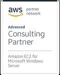 AmazonEC2forWindowsServer (1).png