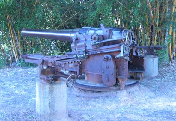 Former QMDF guns
