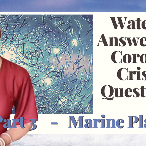 COVID Part 3 - Water's Answers to Corona Crisis Questions - Marine Plasma
