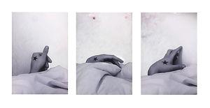 Fanny Gosse, Ho(m)me, exposition Carmina