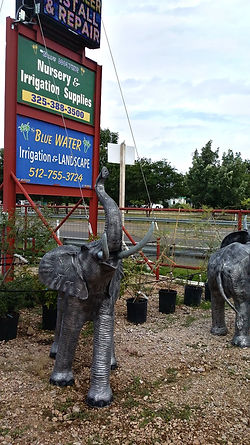 Blue Water Nursery & Irrigation
