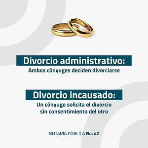 notaria-fav-3.png