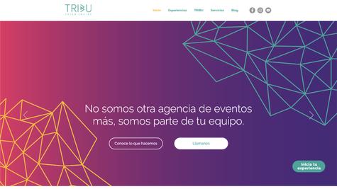 Página web x Pix-07.png
