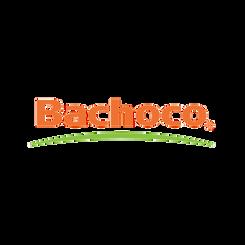 bachoco-logo.png