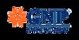GNP-seguros-freecapital.png